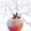 Christmas decoration with apple — Stock Photo