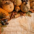 Stock Photo: Autumn pumpkins