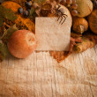 Autumn pumpkins — Stock Photo #30798409