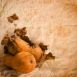 Autumn pumpkins — Stock Photo #30798951