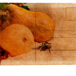 图库照片: Postcard with pumpkin for Halloween