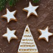 Christmas cookies — Stock Photo #35002881