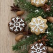 Christmas cookies — Stock Photo #35003521