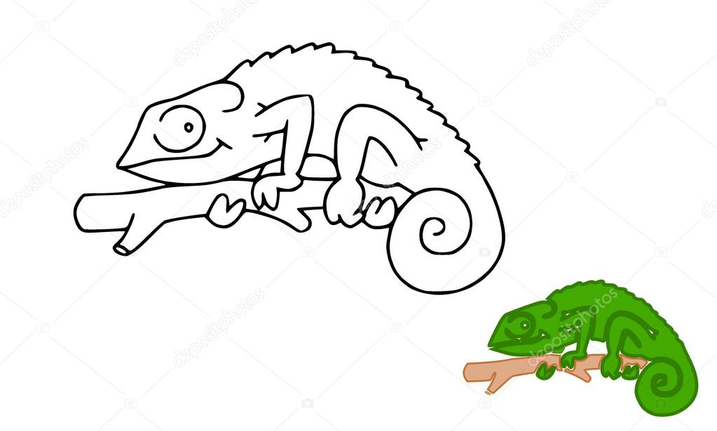 Cameleon  Stock Photo #17630901