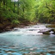 River in spring — Stock Photo