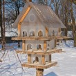 Multistoried feeder for the birds — Stock Photo