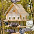 Multistoried house for the birds — Stock Photo