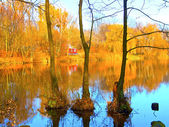 Autumn landscape on a lake — Stock Photo