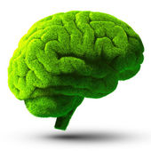 Green brain — Stock Photo