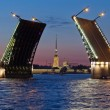 Peter and Paul Fortress and open Palace Bridge — Stock Photo