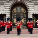 Постер, плакат: A Royal Guard at Buckingham Palace