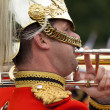 Stock Photo: A Royal Guard at Buckingham Palace