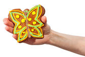 Peperkoek butterfly in de hand — Stockfoto