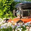 Lawn mower in blossoms — Stock Photo