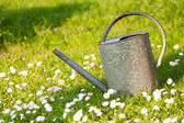 Old watering can in a meadow — Stock Photo