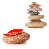 Zen stone with red dry leaf — Stock Photo