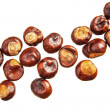 Chestnuts on white — Stock Photo #33952991