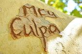 Mea Culpa text scratced on a tree — Stock Photo