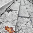 Stock Photo: Autumn leaf half desaturated