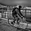 Royalty-Free Stock Photo: Cyclist moving next to river Danube at night