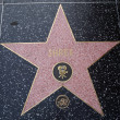 Star of Shrek in Hollywood - Stock Photo