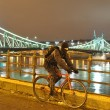 Cyclist moving next to river Danube at night — Stock fotografie #25060161