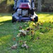 Lawnmower at autumn — Stock Photo