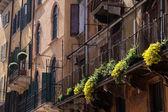 Eski kasaba evleri, verona — Stok fotoğraf