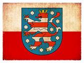 Grunge flag of Thuringia (German Province) — Stock Photo