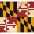 Grunge flag of Maryland (USA) — Photo