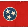 Grunge flag of Tennessee (USA) — Stock Photo #18580715