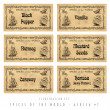 Illustration set spice labels, Africa 1 — Stockfoto