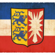 Grunge flag of Schleswig-Holstein (Germany) — Stok Fotoğraf #22030601