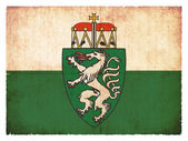 Grunge flag of Styria (Austria) — ストック写真