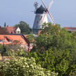 White windmill on Bornholm — Stock Photo