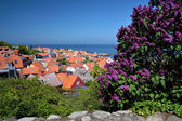 View of Gudhjem on Bornholm — Stock Photo