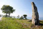 Large monolith on the coast of Bornholm — Foto Stock