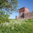 Hammershus castle ruin — Stock Photo