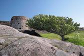 Hammershus castle ruin — Stock Photo