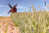 Traebene Mill Windmill with green fields — Stock Photo