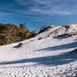 Stock Photo: White sandy beach on south coast of Bornholm