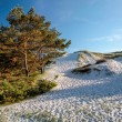Stock Photo: White sandy beach on Bornholm