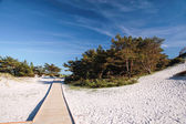 Jetty and white sandy beach on Bornholm — Stock Photo