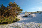 White sandy beach on Bornholm — Stock Photo
