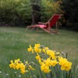 Red deck chair in the garden — Stock Photo