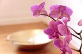 ピンクの蘭とゴールデン歌ボウル — ストック写真