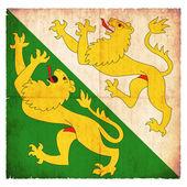 Grunge flag of Thurgau (Switzerland) — Stockfoto