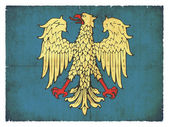 Grunge friuli (i̇talya bayrağı) — Stok fotoğraf