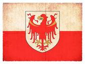 Grunge flag of Alto Adige (Italy) — Stock Photo
