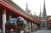 Elephant in Buddhist temple — Stock Photo